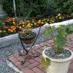 Garden of meeting point at Weir's Beach Rv Resort Victoria BC