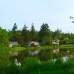 Lagoon Sites at Reir's Beach RV Resort